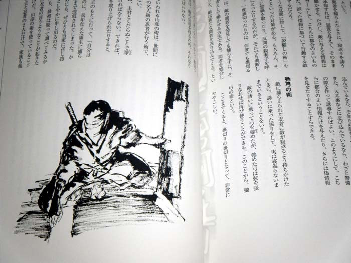 an overview of the japanese samurai Arts of the samurai 2  trace the origin and emergence of the samurai, japan's warrior class, from the medieval to  historical overview.